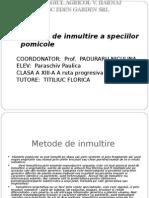 Metode de Inmultire a Speciilor Pomicole_Paraschiv Paulica