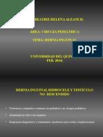 1-CLASE 1 - HERNIA INGUINAL.ppt