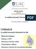 UNIDAD II, Unidad Estructural y Funcional de La Vida