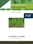 Flora of New Zealand Ferns 2015 Equisetaceae