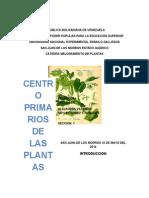 Trabajo Mejoramiento de Plantas