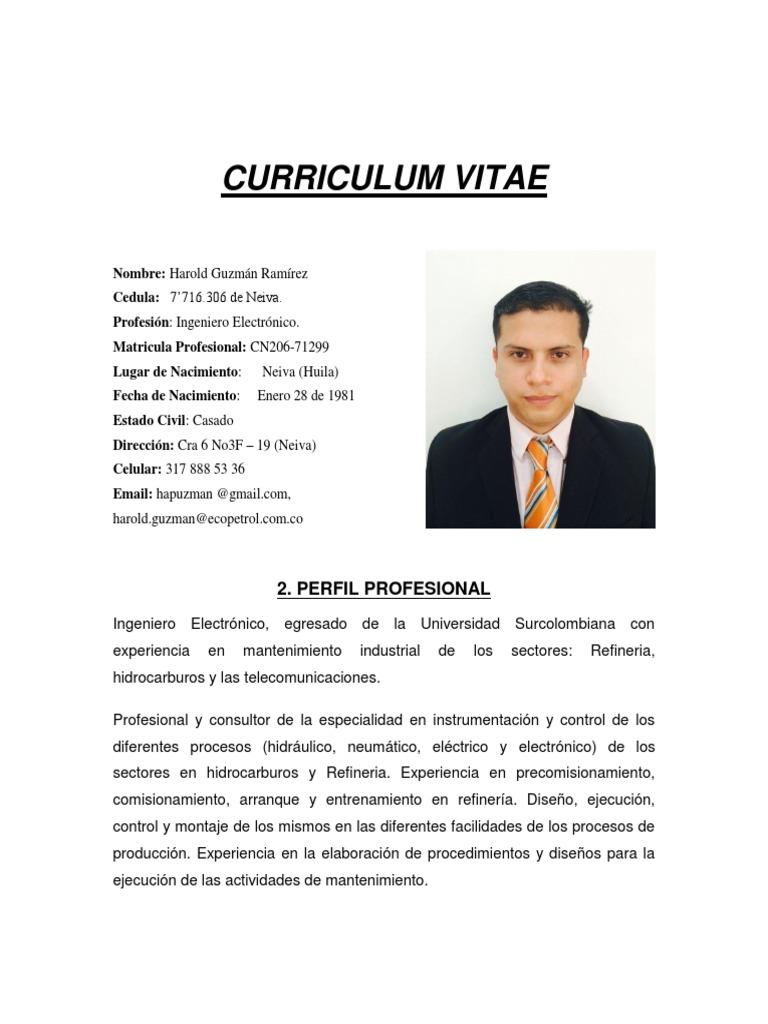 Famoso Ejemplos De Curriculum De Director De Mantenimiento Colección ...