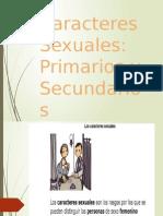 Los Caracteres Sexuales