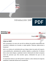 Introducción SAP y Módulo MM