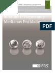 Pequenas y Medianas Entidades 09 07 2009 version 2013 1.pdf