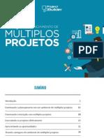 Manual de Gerenciamento de Multiplos Projetos (Project Builder)