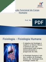 Organizacao funcional do corpo humano.pdf