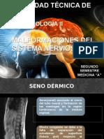 Embrio Malformaciones Sn