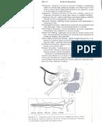 Acoustics Graphics (1)