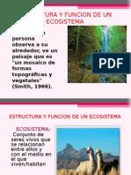 6estructura y Funcion Del Ecosistema