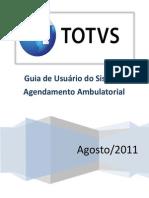 TS GU001 HFRJ Agendamento Ambulatorial v11