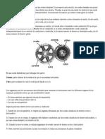 Engranaje Basico Formulas