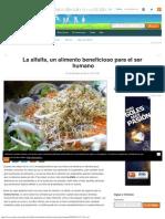 La alfalfa, un alimento beneficioso para el ser humano.pdf