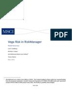 vega risk.pdf