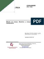Norma Ntg 41056 Astm c1019-11