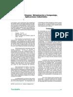 tec_v10_no17_2006_p25-28.pdf