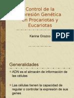 regulacion-genetica