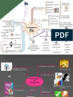 Mapa Mental de cuantitativa.ppt