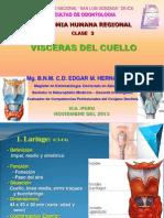 CLASEIII VISCERAS.pdf