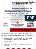 RCP 2010.pptx