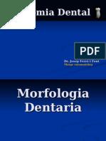 ANATOMIA DENTAL3.pps