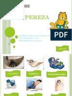 Exposicion de La Pereza