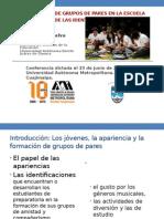 La formación de grupos de pares en la escuela y las fuentes de las identificaciones juveniles