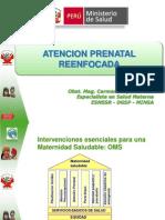 1-Atencion Prenatal Reenfocada (1)