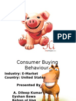 Consumer Buying Behaviour on interet
