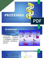 proteinas-aminoacidos