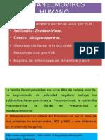 METANEUMOVIRUS.pptx