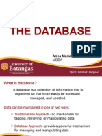 The Database MIS Report