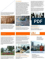 UDP Falt Flyer 070110 Preprint