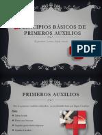 Principios Básicos de Primeros Auxilios pdf
