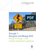 Risk Management Best Practice Guide for Small-Mid Cap Companies