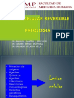 274276663 02 Lab Patologia Lesion Reversible