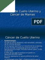 Cáncer de Cuello Uterino y Cáncer de Mamas 2013 (1).ppt