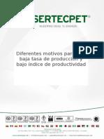 Diferentes Motivos Para Una Baja Tasa de Producción y Bajo Índice de Productividad