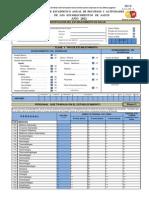Formulario Informe RAS 2012