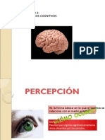 90692495-Percepcion