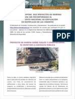 Proyecto Norma.pdf