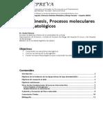 ATEROGENESIS.pdf