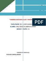 TUMORES NASOSINUSALES Y RINOFARINGE.docx