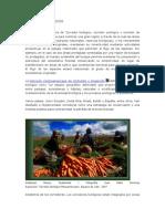 CORREDORES BIOLOGICOS