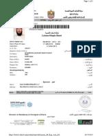 UAE visit visa sample
