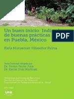 Mexico, cultivo