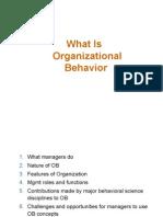 Orrganisational Behaviour