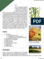 Arroz - Wikipedia, La Enciclopedia Libre