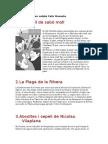 Resums Examen Catala Cafe Granota
