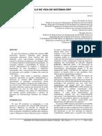 Vida Util ERP.pdf